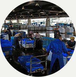 魚市場団体保証