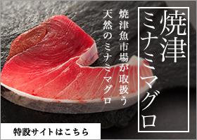 焼津ミナミマグロ